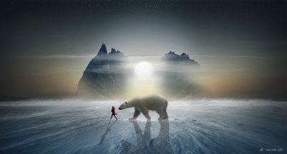arctic_protector_by_softyrider62-d9kn7gy