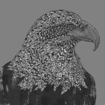 eaglewebsite