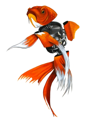 fnm-fish