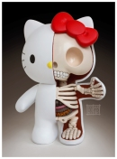 hello_kitty_dissection_2_0_by_freeny-d5tkcfa