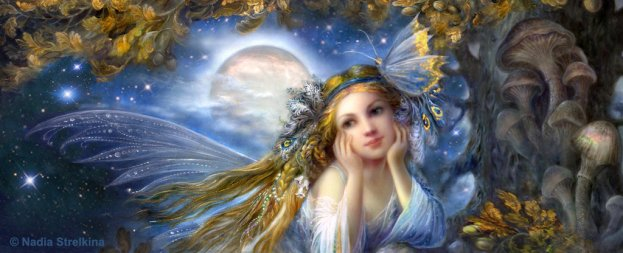 magic_night_by_fantasy_fairy_angel-d7ytfsd