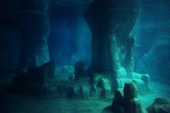 underwater_by_elenadudina-d9jgcp0
