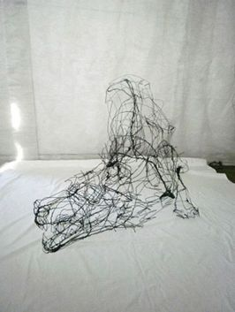 wire-sculptures-by-david-oliveira-8211-transparentcities-1352665941_b