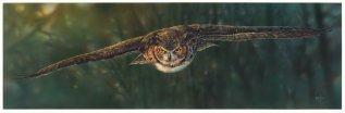 aerial_intensity____great_horned_owl_by_denismayerjr-d8xso3e