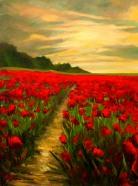 poppy-pathway
