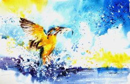 speed_painting___kingfisher_by_abstractmusiq-d7guj3d