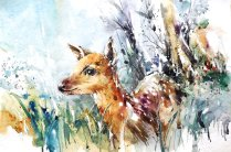 wildlife_watercolor___baby_deer_by_abstractmusiq-d8a77xx