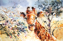 wildlife_watercolor___giraffe_by_abstractmusiq-d83v13u